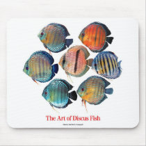 The mouse pad of Discus fish