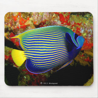 "The mouse pad ""of Emperor Angelfish"", No.01"
