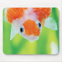 The mouse pad of Ping-Pong-Pearl, No.01