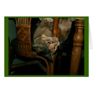 the mouser prefers the chair greeting card