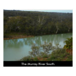The Murray River Poster