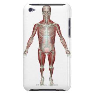 The Musculoskeletal System 10 Barely There iPod Cases