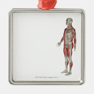 The Musculoskeletal System 11 Metal Ornament