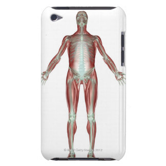 The Musculoskeletal System 4 iPod Touch Cases