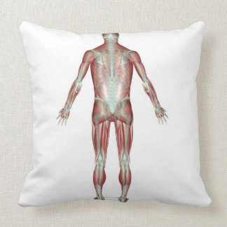 The Musculoskeletal System 9 Throw Pillows