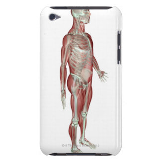 The Musculoskeletal System Barely There iPod Covers