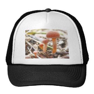 The Mushroom Family Trucker Hat