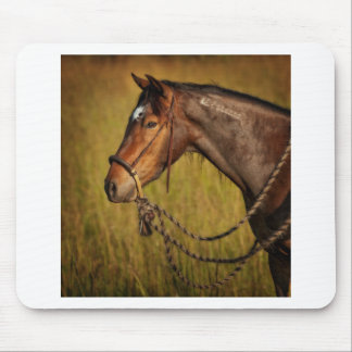 The Mustang Mouse Pad