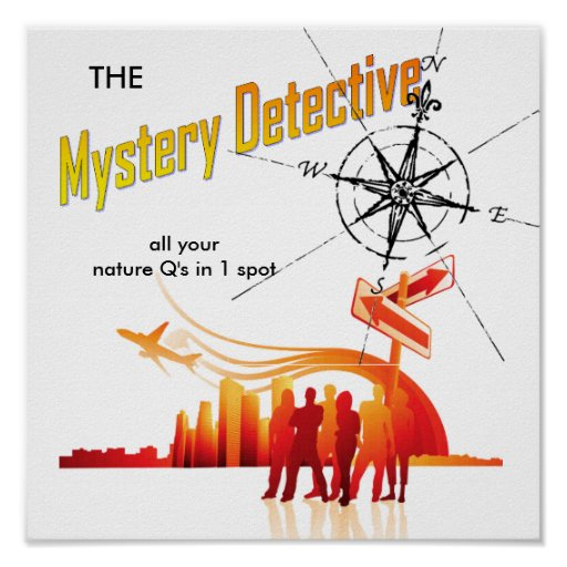 (the) Mystery Detective Posters