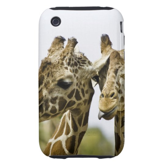 The name giraffe is derived from the Arab word Tough iPhone 3 Case