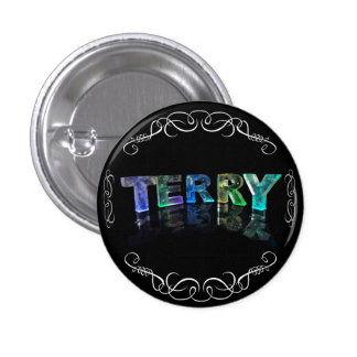 The Name Terry -  Name in Lights (Photograph) Button