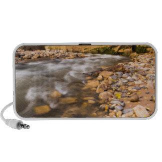 The Narrows Of The Virgin River In Autumn 4 Mini Speaker
