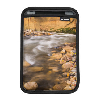 The Narrows Of The Virgin River In Autumn 4 Sleeve For iPad Mini