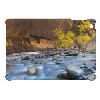 The Narrows Of The Virgin River In Autumn iPad Mini Covers