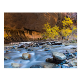 The Narrows Of The Virgin River In Autumn Postcards