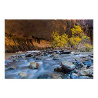 The Narrows Of The Virgin River In Autumn Poster