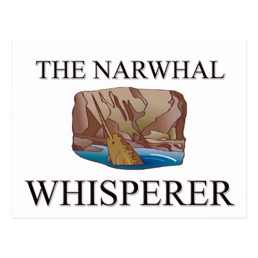 The Narwhal Whisperer Postcards