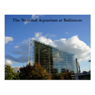 The National Aquarium of Baltimore Postcard