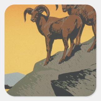 The national parks preserve wild life square sticker