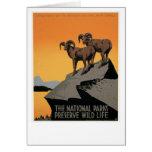 The National Parks Preserve Wildlife Card