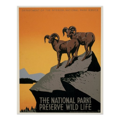 The National Parks Preserve Wildlife Poster