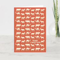 The Nativity Card - Merry Christmas - Orange