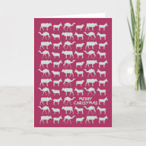 The Nativity Card- Merry Christmas - Pink/Blue Holiday Card