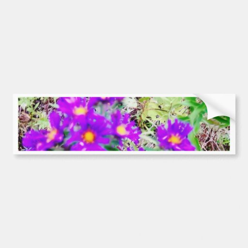 The Nature of Flowers Bumper Sticker