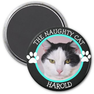 THE NAUGHTY CAT: Humorous Pawprints Photo Button