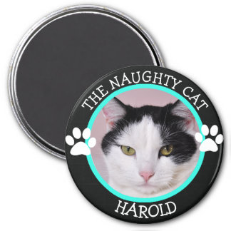 THE NAUGHTY CAT: Humorous  Pawprints Photo Button Magnet