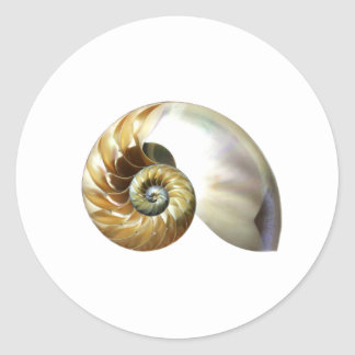 The Nautilus Shell Classic Round Sticker