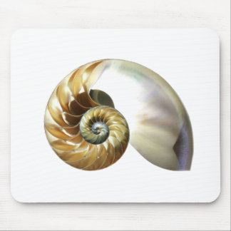 The Nautilus Shell Mouse Pad