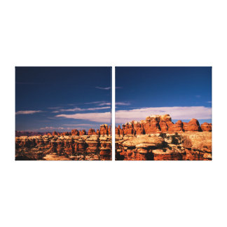 The Needles in Canyonland National Park Panorama. Canvas Print