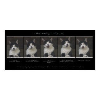 """THE NEGOTIATOR"" Funny Cat Photo Sequence Poster"