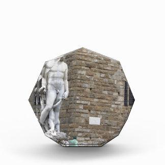 The Neptune fountain and Palazzo Vecchio Acrylic Award