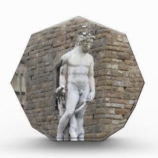 The Neptune fountain and Palazzo Vecchio Award