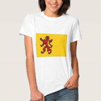 The Netherlands Zuid-Holland Flag Shirt
