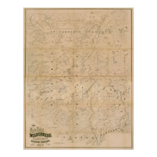 The New York Wilderness. 1879 Map. Poster
