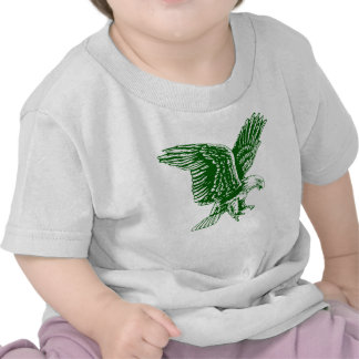 The Nigerian Super eagle fans gift ideas T-shirt