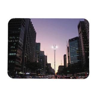 The Night In The Paulista Avenue - Sao Paulo Magnet