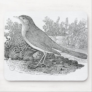 The Nightingale Mouse Pad