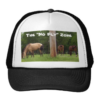 "The ""No Fly"" Zone Hat"