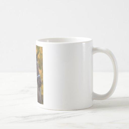 The Noble Arabian Classic White Coffee Mug