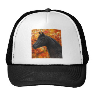 The Noble Arabian Mesh Hats