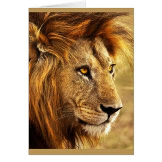 The Noble Lion Photograph Card