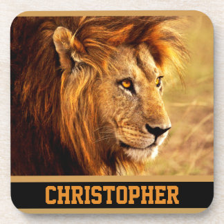 The Noble Lion Photograph Drink Coaster