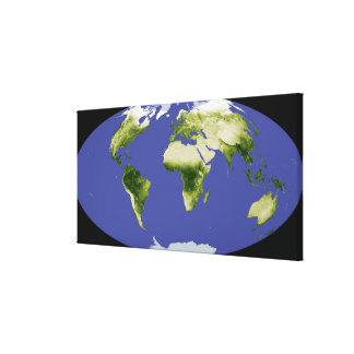 The Normalized Difference Vegetation Index Canvas Print