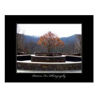 The North Carolina Arboretum - Postcard