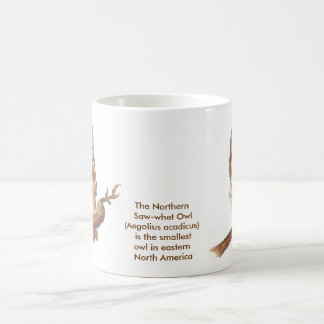 The Northern Saw-whet Owl Mug