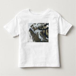 The Northwest Passage Toddler T-shirt